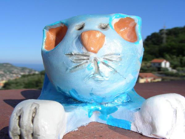 Immagine di un gatto azzurro a lastra primo piano