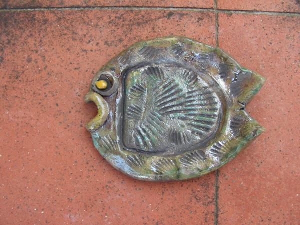 Immagine di un pesce fossile raku