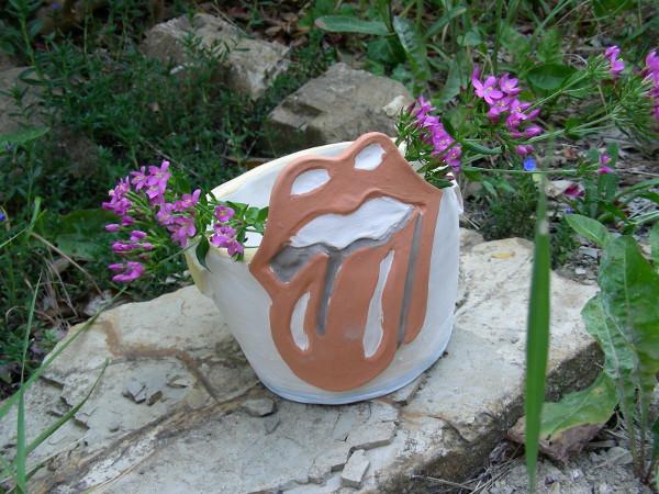 Immagine di una vaso Rolling Stones vista esterna e piante