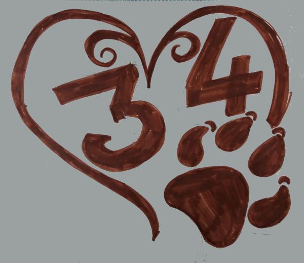 Immagine di una delle prove dei disegni preparatori del numero civico in ceramica