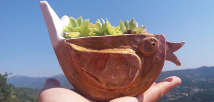 Vasi e portavasi in ceramica per fiori e piante
