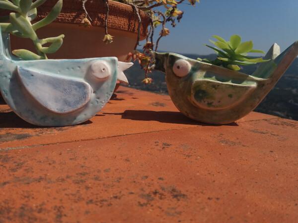Immagine di due vasi in ceramica artigianale con piante e fiori