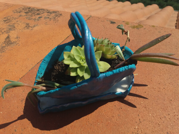 Immagine di un piccolo vaso e sottovaso in ceramica con piante grasse